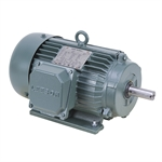 1 HP 1800 RPM 230/460 Volt AC 3Ph 145T Leeson Motor