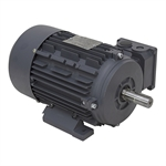2 HP 3500 RPM 230/460 3Ph TEFC Motor