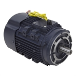 1 HP 1725 RPM 230 Volt AC 3PH MARATHON Electric Motor