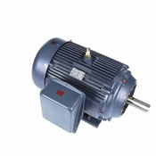 100 HP 1800 RPM 208-230/460 Volt AC 3Ph Leeson Motor