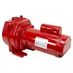 2 HP Red Lion RLSP-200-SP 80 GPM Sprinkler Pump - Alternate 1