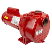 2 HP Red Lion RLSP-200-SP 80 GPM Sprinkler Pump
