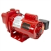 3/4 HP Red Lion RJS-75-SP Shallow Well Pump - Alternate 1