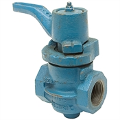 1/2 NPT Cast Iron Shut Off Valve