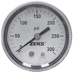 300 PSI 2 PM Dry Gauge Winters 697683