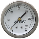 300 PSI 2.5 CB Dry Gauge Winters 631789
