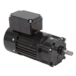 100 RPM 230 Volt AC 3-Phase 1/8 HP Bodine Gearmotor