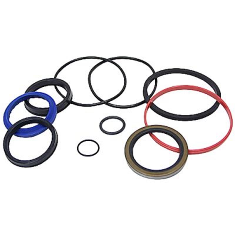 2 50 Bore 1 13 Rod Lion LH3000 Seal Kit RK25WR113