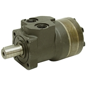5.4 cu in White Drive Products 255090F3169AAAAA Hydraulic Motor